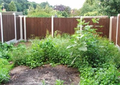 garden-design-essex-011
