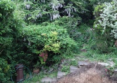 garden-design-essex-022