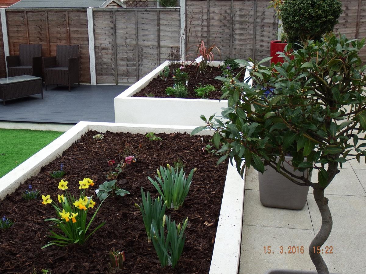 harold wood garden design 5